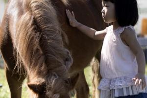 [포토] '말과 소녀의 교감'