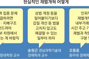 """[김&장 시대] """"재벌 개혁, 공정위 아닌 범정부적 추진을"""""""