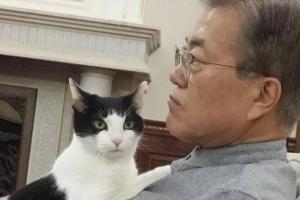 """찡찡이 문재인 대통령 품에 안긴 모습 """"떨어지려하지 않아요"""""""