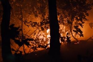 강원 양양 펜션서 화재 발생…인근 산으로 번져