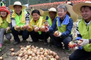 [단독] 상호금융 독립법인화 시동 건 농협중앙회… '제2의 농협은행' 출범하나