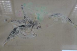 캠코, 故 천경자 채색화 등 18점 온비드 미술품 공매