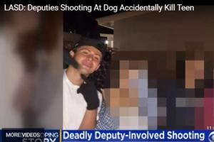 美 경찰관이 개를 향해 쏜 총에 10대 소년 사망…무슨 일?