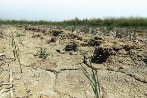 자체 제한급수… 목욕탕은 휴무… 전국은 지금 '물 절약 고통 나눔'