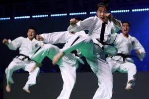 [포토] '이~~얍!!!'…'2017 무주 WTF 세계태권도선수권대회'