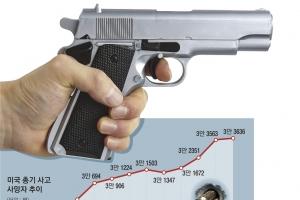 술보다 총 사기 쉬운 미국… 年 3만명 '내전'으로 숨진다