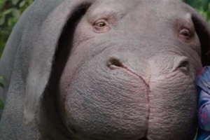 [송혜민 기자의 월드 why] 유전자 변형 슈퍼돼지 옥자, 당신의 식탁에 오른다면?