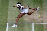 윌리엄스, 윔블던 테니스 …