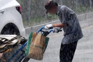 [서울포토] 네티즌 울린 '비에 젖은 폐지'… 가족까지 찾았다