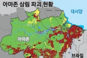 브라질, '지구의 허파' 아마존 국유림 축소 법안 추진 논란