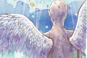 [고진하의 시골살이] 야성의 날개는 접지 않고 산다