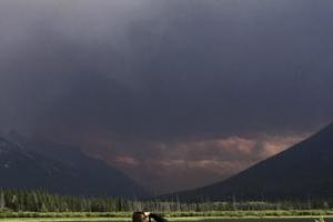 캐나다 산불 열흘 째 진화 중…서울 면적 3배 소실·4만여명 대피