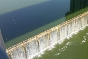 상류서 흘러온 유기물질로 영주댐 '녹조'…낙동강 수질악화 우려