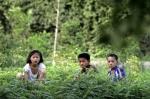 북한 어린이들의 여름 나…