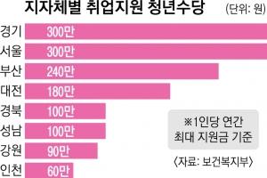 '천차만별' 청년수당… 서울·경기 최대 300만원, 인천 60만원