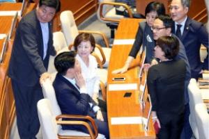 추경안 통과…장제원·김현아, 한국당 집단퇴장에도 자리 지키고 '찬성표'(종합)