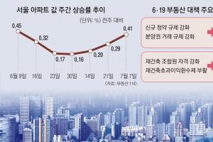 [뉴스 분석] 수급 예측 헛발·무뎌진 학습효과… 약발 안 받는 집값