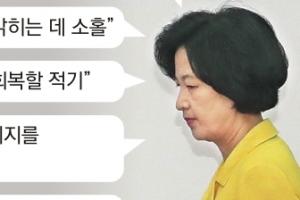 """""""부실조사 뒤에 숨은 대법원장"""" 사법개혁 주문한 與"""