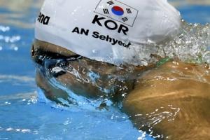 안세현, 세계선수권 접영 200m서 8위로 결승 진출