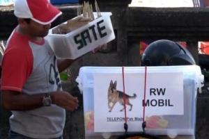 인도네시아 발리, '청산가리 오염' 논란에 개고기 판매 금지령