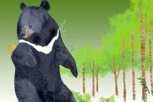 [씨줄날줄] 곰 사랑/이동구 논설위원