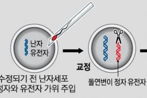 인간 배아서 '유전자 가위'로 돌연사 DNA 잘라냈다