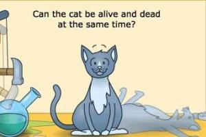 '슈뢰딩거 고양이'의 양자역학, 반도체·레이저로 무한 진화