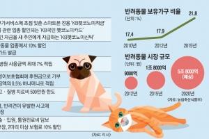 반려동물 1000만… 카드·보험 잘 고르면 양육비 '뚝'