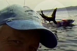 '저 보러 왔어요?' 바다사자의 깜짝 인사