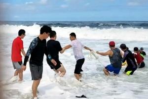 파도에 휩쓸린 40대 남성 목숨 구한 피서객들의 '인간띠'