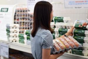 이마트·GS25 등 주요 유통업체, 계란 판매 재개(종합)