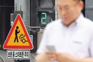 '노인 보행자 교통사고' 10명 중 7명이 이거하다가…최다 발생지역은?