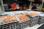 계란서 새 살충제 '에톡사…