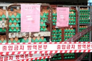 충남 아산 산란계 농장 계란서 살충제 '플루페녹수론' 검출