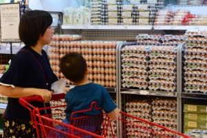 이마트 판매 계란에서도 살충제 성분 '비펜트린' 검출
