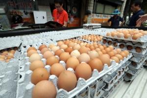 """'살충제 계란' 새로 검출된 에톡사졸·플루페녹수론…""""간손상·빈혈 가능성"""""""
