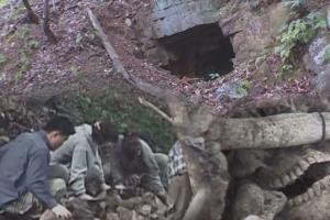 독립운동가 죽인 친일파들…이승만 정권 보도연맹 학살사건