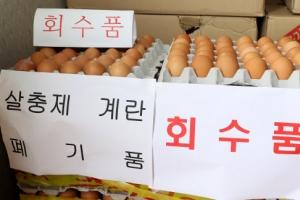 정부, 살충제 계란 번호 또 오류…전수조사서 살충제 항목 누락해 보완조사(종합)