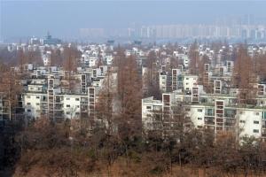 '8·2 대책' 이전 재건축 주택 계약 땐 조합원 지위 인정