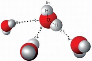 [장수철의 생물학을 위하여] 분자구조로 본 물의 소중함