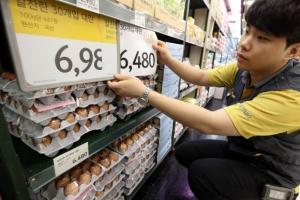 대형마트 3사, 오늘부터 계란값 인하…계란 산지가격 25% 폭락