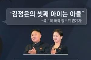 """""""리설주 셋째 출산…아들로 확인"""""""