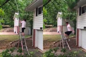 [별별영상] 나뭇가지 아래서 톱질하던 남성 결말