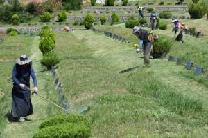 [서울포토] '벌초 하느라 분주한' 공원묘지