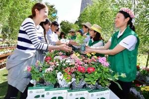 '서울, 꽃으로 피다' 스타벅스 친환경 캠페인