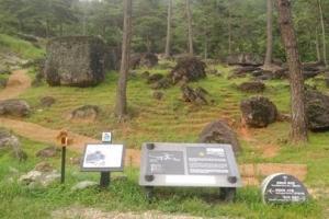[테마별 농촌여행 6] '풍성한 산림 속에서 얻는 힐링' 화순·담양 여행