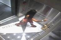 엘리베이터서 반려견 짓밟는 여성 포착