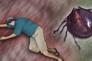 '물리면 죽는다' 살인진드기 감염자 42명 사망