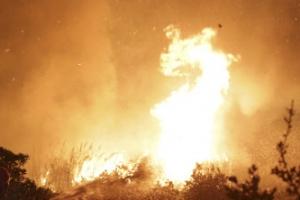 포르투갈·스페인 대규모 산불로 최소 30명 사망