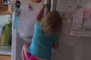 맨손으로 냉장고 오르는 2살 소녀 스칼렛